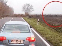 Это возникло ниоткуда на пустой дороге… Водители никогда не смогут забыть этот момент