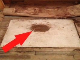 Бабушка и дед завещали дом молодой паре. Когда внук отодвинул диван, то заметил дыру в полу…