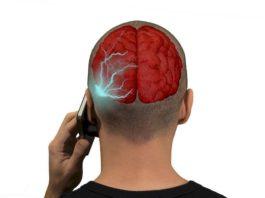 Вред мобильного телефона по мнению ученых: какие опасности для здоровья таит сотовый