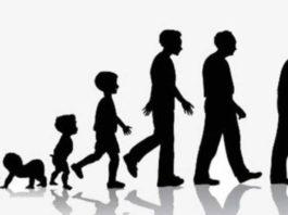 12 загадочных циклов в жизни человека