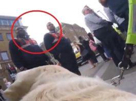 Скрытая камера, установленная на собаке-поводыре, показала немыслимое. Теперь это видео обсуждает весь Интернет…