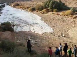 Туристы в пустыне снимали давно высохшую реку. Через секунду все кричали от…