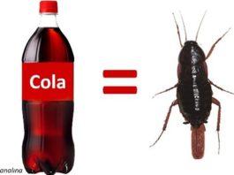 9 ингредиентов в составе Кока-Колы, узнав о которых, вы перестанете ее пить