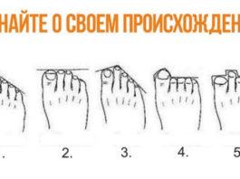 Теория: по расположению пальцев на ногах можно узнать, кем были твои предки