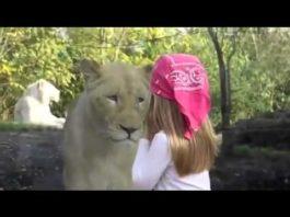 Взгляд львицы, которая подкралась к девочке поразил весь мир