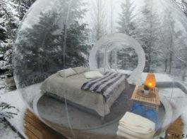 В Исландии в таких ″пузырях″ можно спать и смотреть на лес и северное сияние