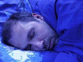 Погасил свет и лег спать. Вдруг среди ночи что-то мягкое по щеке, включаю свет
