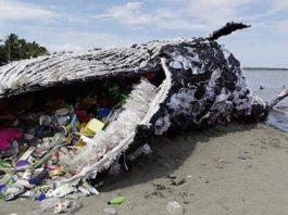 26 фотографий, показывающих загрязнение Мирового океана, и они наводят ужас