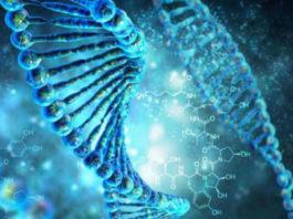Генетики объяснили загадочные явления, раннее считавшиеся паранормальными