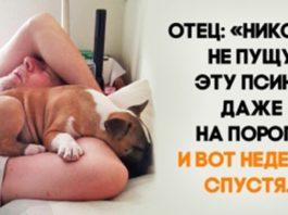 Люди, которые были против домашних животных, а теперь не представляют жизнь без них