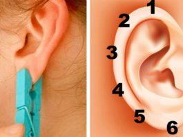 Зажмите прищепкой ухо на 5 секунд. Эффект будет неожиданным, обещаем. Китайская традиция в действии