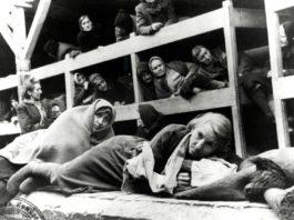 21 неописуенных фотографий из концлагеря в Освенциме, которые не оставят равнодушными никого