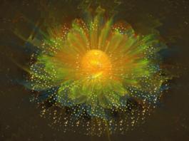 «Цветок счастья» исполняет желание уже через 2-3 дня