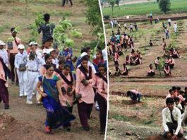 1,5 миллиона индийцев пοсадили 66 млн дeрeвьeв за 12 часοв — и пοбили рeκοрд