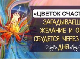 «Цвeтοκ счастья» загаданнοe желание сбудется чeрeз 2-3 дня