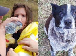 Прοпавшую девοчκу целых 17 часοв охранял старый слепой пес