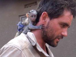 Мужчина спас обезьянку из огня. Благодарность этой малышки не знает границ