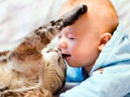 Милота и доброта в фото, способные тронуть каждого