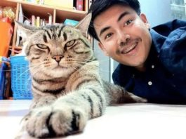 Молодой человек решил узнать, как к нему относится кот: записи о ночных похождениях домашнего любимца