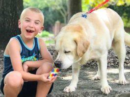 Роману семь лет, и он уже спас больше тысячи собак